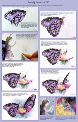 "Outline of the drawing process for ""Butterfly Fairies""."