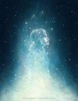 stardust-jyn